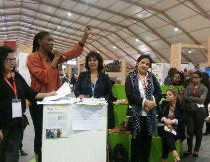 Les Femmes africaines en action à la COP22