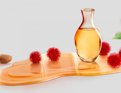 Garnier : de bonnes huiles dans mon shampooing