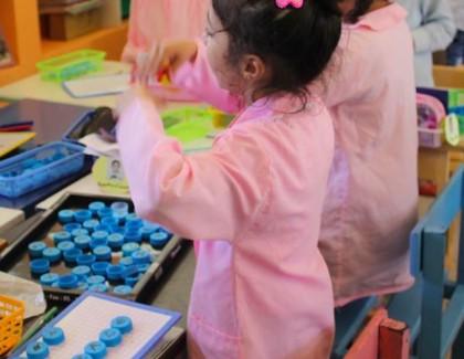 Plus de 60 écoles primaires labellisées Pavillon Vert en 2017
