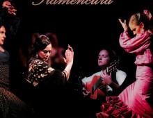 Récital flamenco avec Flamencura
