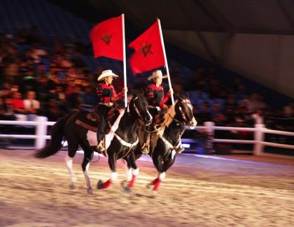 Les 10 ans du Salon du cheval d'El Jadida