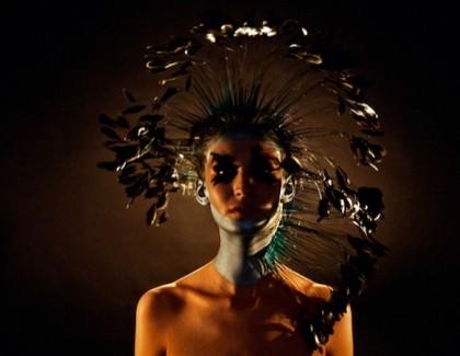 Stella Cadente : Lumière du premier jour