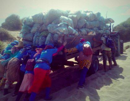 Les nettoyeuses du Trail Beach Eco!
