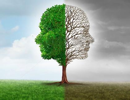Dr Massid : «La psychogénéalogie permet de se libérer des freins et blocages»