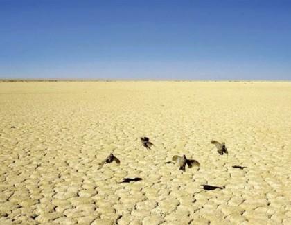 Tous les déserts…