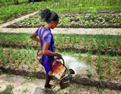 «Believe in Africa»: les femmes,clé du succès de l'Afrique