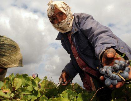 """""""SALAMA au travail"""" se poursuit dans le milieu rural"""